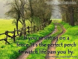 fence life pass by